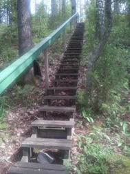 katri Kytopuu stairs in woods
